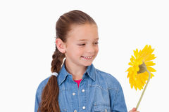 Girl looking at a flower Royalty Free Stock Images