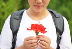 Girl looking flower in her hands Stock Photo