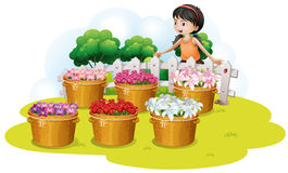 A girl looking at the flowers in the basket Royalty Free Stock Photos