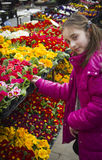 Girl looking at flowers at farmers market Royalty Free Stock Photography