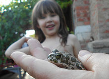Girl looking at a frog Royalty Free Stock Photo