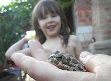 Girl looking at a frog. That is holding a mother Stock Photos