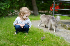 A girl looking at a hedgehog Stock Photo