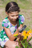 Girl looking through magnifying glass on flower Stock Image
