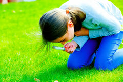 Girl looking through magnifying glass on the grass Royalty Free Stock Images