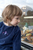 Girl looking at shop window. Small girl looking at shop window. Gnome toy lamp on background Stock Images