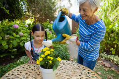 Girl looking while smiling senior woman watering yellow flowers on table Royalty Free Stock Image