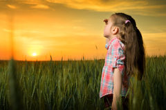 Girl looking at sunset Royalty Free Stock Image