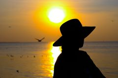 A girl looking the sunset. Silhouette girl looking the sunset Stock Photography