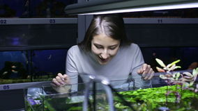 Girl looking at tropical fish in aquarium stock video footage