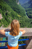 The girl looks from the bridge to the canyon Stock Image