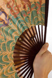 Girl looks through a Chinese fan Royalty Free Stock Images