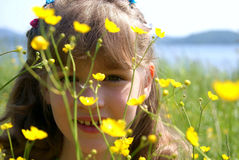 The girl looks because of flowers. In the summer on a meadow the child looks out because of yellow flowers Stock Photos