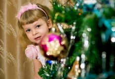 Girl looks out of New Year tree Royalty Free Stock Photos