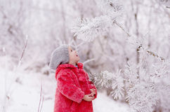 Girl looks at a snowy branch. Little girl looks at a snowy branch royalty free stock images