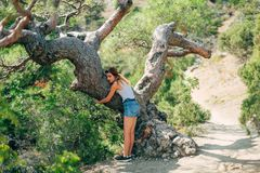 Girl lovingly hugging tree outdoors in clean Park in summer Royalty Free Stock Photo