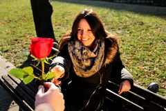 Girl lovingly looking at the hand and a red rose. Man giving women a red rose in the park. Smiling young women enjoying in the park and lovingly looking at the Stock Images
