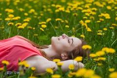 Girl lying on the field of dandelions Stock Image