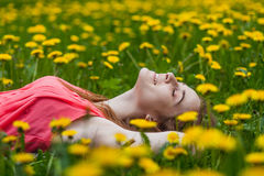 Girl lying on the field of dandelions Royalty Free Stock Photos