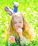 Girl lying on grass, grassplot on background. Girl on dreamy face holds daisy flower. Child enjoy spring sunny weather. While lying at meadow with tender daisy stock images