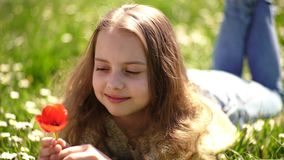 Girl lying on grass, grassplot on background. Girl on dreamy face holds red tulip flower, enjoy aroma. Child enjoy. Spring sunny day while lying at meadow with stock footage