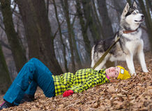 Girl lying on the leaves of a husky dog. In forest Stock Photography