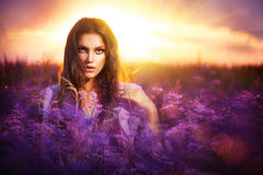 Girl Lying on a Meadow. Beauty Girl Lying on a Meadow with Violet Flowers Stock Photos