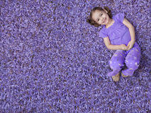 Girl lying on purple flowers royalty free stock photo