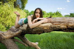 Girl lying on a tree Stock Image