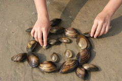 The girl made the little man of molluscs Royalty Free Stock Photography