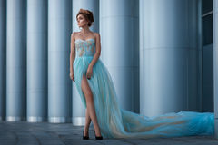 Girl in a magnificent dress among the columns. Stock Photos