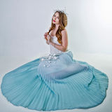 Girl in magnificent dress Royalty Free Stock Photos