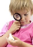 Girl with magnifying glass Royalty Free Stock Photos
