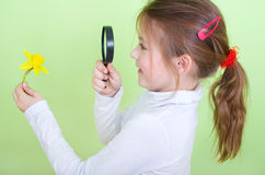 Girl with magnifying glass and Narcissus Royalty Free Stock Photos