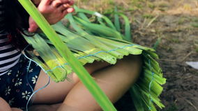 Girl make pants from bush acorus. In the nature stock video