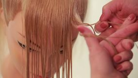 Girl makes a braid. Wizard makes the hair of the mannequin. White. Close up stock video footage