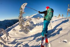 Girl makes ski mountaineering alone toward the mountain pass in a nice track with sealskin stock photos