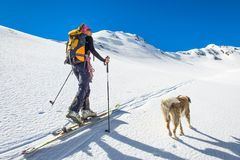 Girl makes ski mountaineering with dog.  Royalty Free Stock Photography