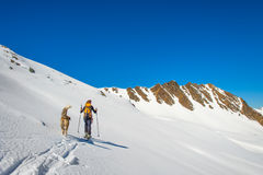 Girl makes ski mountaineering. With dog Royalty Free Stock Image