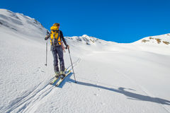 Girl makes ski mountaineering. Randonnee ski trails Royalty Free Stock Images
