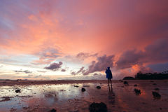 Girl making photo pink sunset over the sea.  Royalty Free Stock Photography