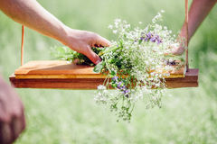 Girl making wildflower bouquet Royalty Free Stock Images