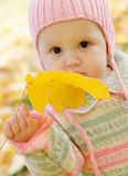 Girl with maple leaf. Little girl in a knitted hat with a yellow maple leaf in a hand royalty free stock images