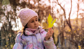 Girl with maple leaf. Girl walking in autumn park with a maple leaf Stock Image