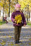 Girl with maple leaves Stock Photos