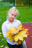 Girl with maple leaves. Girl with a bunch of yellow, autumn leaves stock image