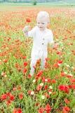 Girl on meadow Stock Photography