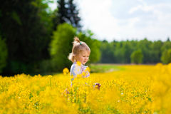 Girl on the meadow. Little girl on the meadow Stock Photo