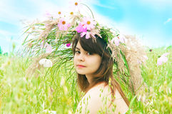 The girl on a meadow Stock Photography