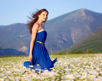 Girl on the meadow Stock Images